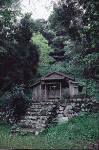 吉井町の吉田大明神社叢