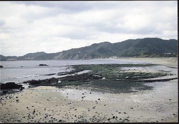 脇岬のビーチロック