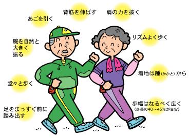 正しい歩き方は、関節や筋肉に ...